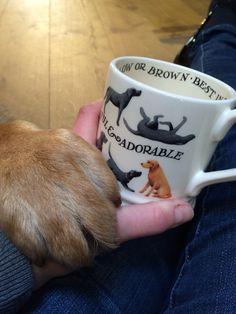 Emma Bridgewater labrador mug www.byhedges.nl