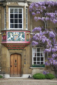 Christ's College ~ Cambridge ~ England. The Wisteria is beautiful! Oxford England, Cambridge England, England Uk, Christ College, England And Scotland, England Ireland, Christen, Wisteria, Windows And Doors