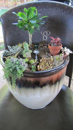 Miniature Garden for full sun