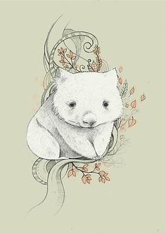 Wombat by Ania Tomicka Cute Wombat, Baby Wombat, Cute Animal Illustration, Tattoo Illustration, Animal Illustrations, Animal Drawings, Art Drawings, Australian Animals, Art Graphique