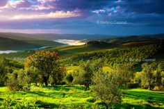 tuscan countryside | http://www.tuscany-photo.com/wp-content/flagallery/tuscany-countryside ...