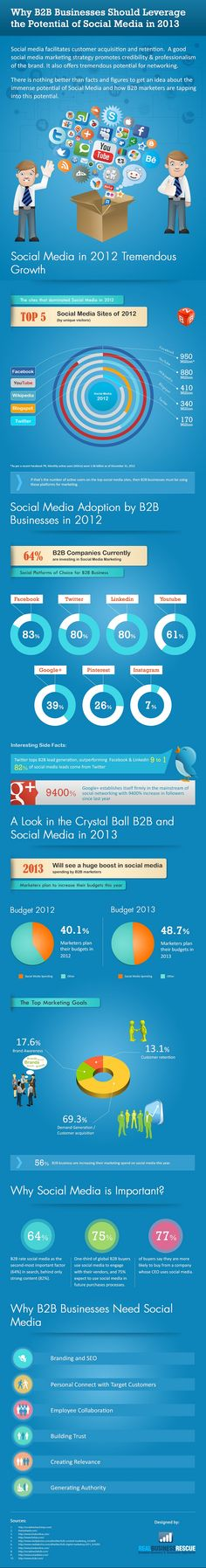 Why B2B Businesses Should Leverage the Potential of Social Media in 2013? #Infographic