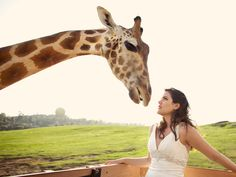 Such an awesome and unique photo from Sara France Photography. #wedding #giraffe