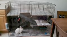 DIY Indoor rabbit cage / condo
