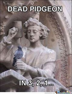 Okay, I saw this and immediately thought it was a countdown to the moment the pigeon blinked and had its time energy eaten by a quantum locked alien, but then I realized that it's really just a statue with a mallet.