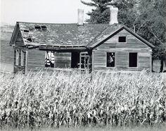 Farmscapes – 2011 Capture the Heart of America Photo Contest