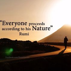 Sufi Quotes, Words Quotes, Famous Quotes, Best Quotes, Rumi Poem, Unique Quotes, Uplifting Quotes, English Quotes, Thought Provoking