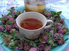 Red Clover Tea A quick way to detoxify your body and clear your system of excess… Herbal Remedies, Natural Remedies, Wild Edibles, Alkaline Foods, Medicinal Herbs, Tea Recipes, Herbal Medicine, Natural Medicine, Detox Drinks