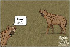 Idees Vol Vrees Volume 2 Hyena, Afrikaans, Word Art, South Africa, Cartoon, Humor, Comics, My Love, Words
