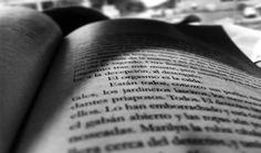 Lectura en el camino.  Hola Chiriqui ...