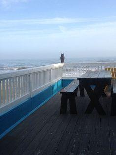 19 best beach house rentals images beach homes beach cottages rh pinterest com