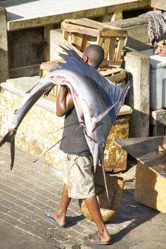 Fish Market, Dar-El-Salaam, Tanzania.Wouldn't mind the guy carrying the fish ....