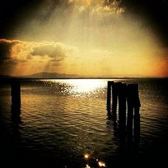 Solo per pochi perla del Trasimeno... #travel #travelling #trasimenolake #lake #umbriagram #umbria #volgoitalia #volgoperugia #volgoumbria #photooftheday #photopics #picture #nature #likeforlike #versagram #bestoftheday #top_italia_photo #top #superb #amazing #love #tramonto #best by thiago_gram_80