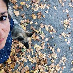 I think I've just been photobombed by @thepalumbos #declandog  #dogwalking #brightonlife #selfiesaturday #instagsds