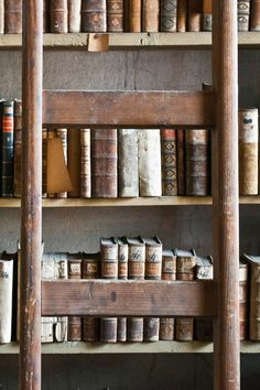 Old books/fabulous ladder