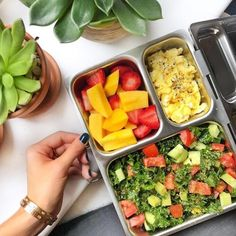 Adults like lunchboxes too!!!⠀⠀  ⠀⠀  Pic cred: @holisticrx ⠀⠀  ⠀⠀  ⠀⠀  ⠀⠀  #planetbox #lunchbox #lunch #planetboxlunch #lunchboxlove #schoollunch #healthykids #school #kids #kidslunch #bento #bentobox #lunchboxideas#packedlunch #mealprep #gogreen #ecofriendly #sustainable #nofoodwaste #wastefree #sustainableeatingoctober    #Regram via @planetbox