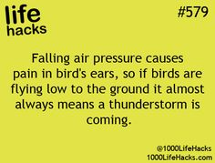 Good to know. Kinda equal to the sinus pressure we get sometimes.