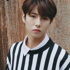he looks winwin here Nct 127, Nct Dream Members, Huang Renjun, Na Jaemin, Entertainment, Foto Bts, Winwin, Boyfriend Material, Taeyong