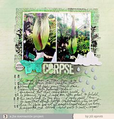 Corpse Flower by Jill Sprott Scrapbook Supplies, Scrapbooking Layouts, Scrapbook Pages, Grid Design, Layout Design, Corpse Flower, Layout Inspiration, Your Word, Project Life