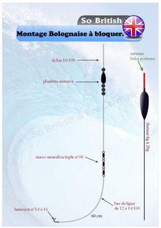 Montage d'une ligne pour la pêche à la Bolognaise à bloquer ou caler. - Pêche quiver feeder method et Anglaise, techniques montages et matériel