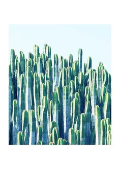 East End Prints - Cactus by 83 Oranges, £19.95 (http://www.eastendprints.co.uk/products/cactus-by-83-oranges.html)