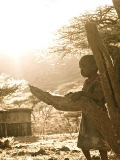 Samburu homestead in the Northern Frontier District, Kenya