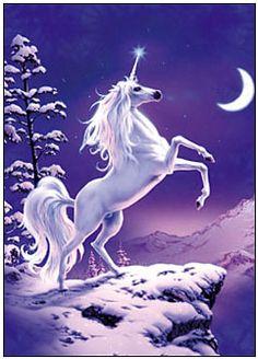 unicornio12