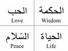 Love , wisdom and peace are life!