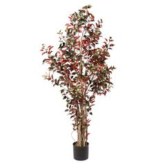 7' Vickerman H110970 Deluxe - Green, Red