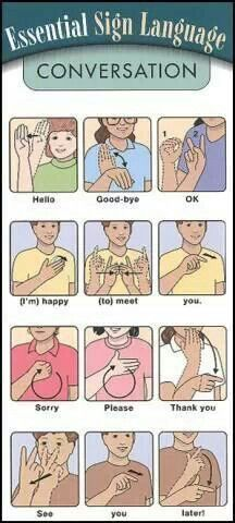 "Essential ASL Sign Language - for SASL (South African SL) please ignore the signs for ""good-bye"", ""thank you"" and ""later"", the other signs are the same. Also the ASL sign for ""please"" is the SASL sign for ""pleasure"" Sign Language Words, Sign Language Alphabet, Learn Sign Language, American Sign Language, Sign Language Basics, English Sign Language, Australian Sign Language, Spanish Language, French Language"