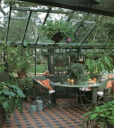 what a wonderful greenhouse.....love everything in it...