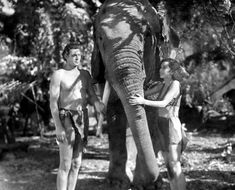 Johnny Weissmuller and Maureen O'Sullivan. In ''Tarzan and His Mate'' 1934