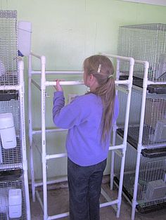 How to build a rack for stacking rabbit cages by Good Hare Daze Rabbitry Raising Rabbits For Meat, Meat Rabbits, Bunny Cages, Rabbit Cages, Farm Animals, Animals And Pets, Small Animals, Show Rabbits, Chicken Cages