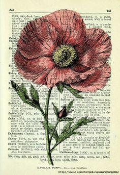 wildflowers2 (480x700, 382Kb)