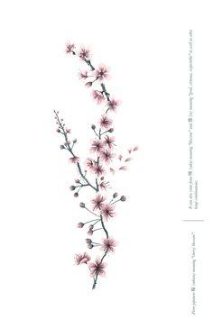 cherry blossom print sakura meaning poster.  Marina Guiu on Behance