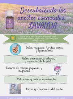 Aceite Esencial de Lavanda (Español) - Propiedades - Young Living
