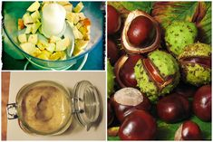 Házi készítésű gesztenye krém - aranyérre, vénákra, duzzadt, vizes bokákra - Zöld Újság Coconut, Fruit, Minden, Turmeric, Alcohol