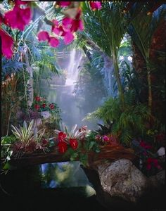 The Mirage Hotel's tropical atrium in Las Vegas