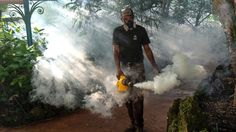 The mosquito-borne virus that emerged in Miami last year has been conspicuously absent in Florida this year, with fewer infections and no local cases as of Aug. Zika cases have also declined in the Caribbean and South America. Abortion Debate, Zika Virus, Emergency Response, Wall Street Journal, Niagara Falls, South America, Puerto Rico, Caribbean, Stuff To Do