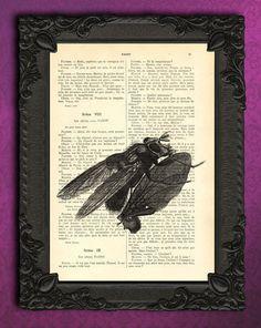 Fliege,+Insekt,+kunst+von+Madame+Memento+auf+DaWanda.com