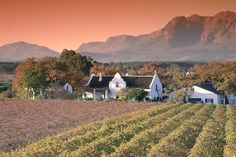 Cape Winelands, South Africa, is the perfect place to relax after you tour Cape Town.