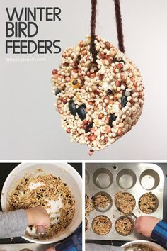 Making Birdseed Cookies for a DIY Winter Bird Feeder - Unflavored Water - Ideas . - Making Birdseed Cookies for a DIY Winter Bird Feeder – Unflavored Water – Ideas of Unflavored W - Diy For Kids, Crafts For Kids, Kids Winter Crafts, H Preschool Crafts, Pet Theme Preschool, Pinecone Crafts Kids, Diy Pour Enfants, Bird Feeder Craft, Bird Seed Feeders