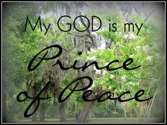 My God is.....: My God is my Prince of Peace