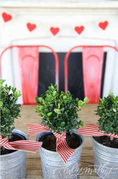 mini tins filled with boxwood and tied with a red & white striped ribbon // via Holly Mathis Interiors: cute idea for valentines party centerpiece/party favors