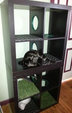 """Our latest project, a cat playground. It has the """"meow"""" of approval."""