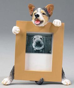 Take a look at this Welsh Corgi Frame on zulily today!