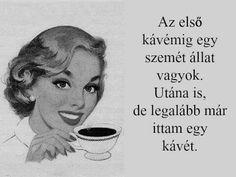 Marvel, Humor, Funny, Life, Coffee, Good Morning, Humour, Moon Moon, Ha Ha