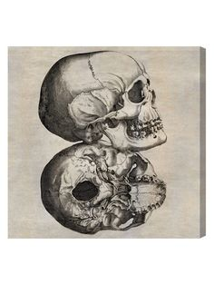 Double Skull (Canvas) by Oliver Gal at Gilt