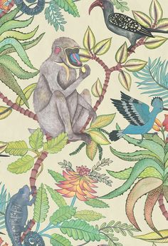This majestic Savuti Wallpaper forms part of Cole & Son's Ardmore Collection. It features a large scale design of baboons, chameleons, hoopoes and hornbills amongst flowers and foliage. Luxury Wallpaper, Wallpaper Roll, Designer Wallpaper, Monkey Wallpaper, Beautiful Wallpaper, Rare Birds, Exotic Birds, Motif Jungle, Cole Son