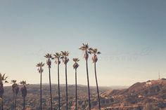 Hollywood Hills   Photographic Print  by wanderlustography on Etsy
